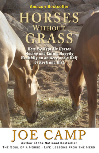 HorsesWithoutGrass-Cover-Print-R1.indd