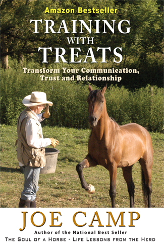 TrainingWithTreats-Cover-PrintR1.indd