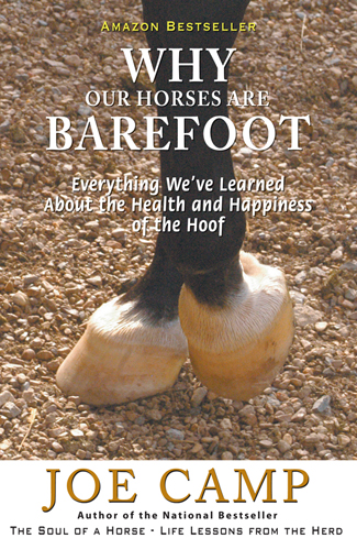 WhyOurHorsesAreBarefoot-Cover-Print-R1.indd