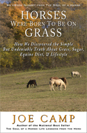Horses Were Born-Grass