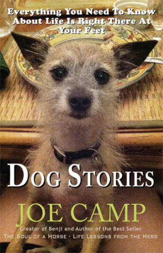 DogStoriesCover2a325