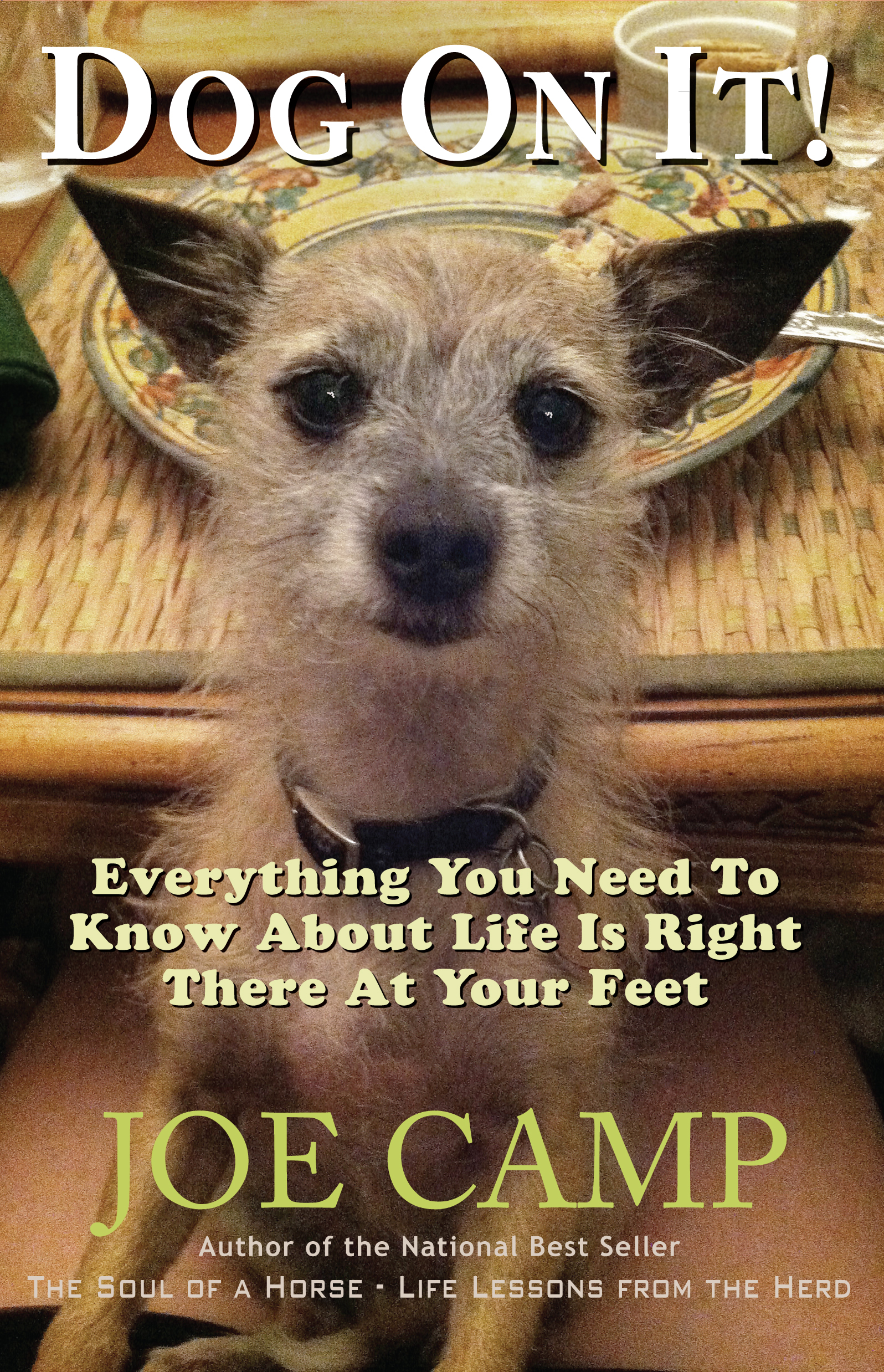 Dog On It! - Everything You Need to Know About Life Is Right There at Your Feet - Personally Inscribed