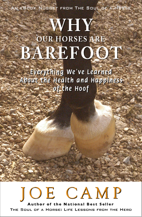 Why Our Horses Are Barefoot - Everything We've Learned About the Health and Happiness of the Hoof - Personally Inscribed