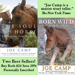 The story of Joe and Kathleen's journey with horses is completely told in these two best sellers. And what a story it is as two novices without a clue stumble and bumble their way through the learning process so that hopefully you won't have to.