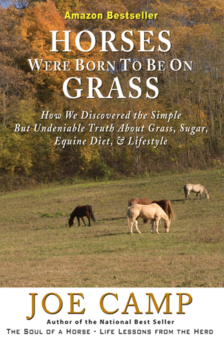 HorsesBornToBeOnGrass-Cover-Print-R1.indd