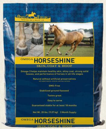 horseshine500