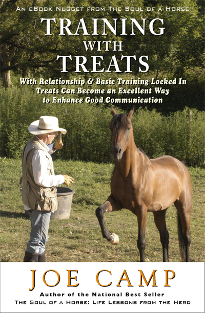 Training with Treats - With Relationship & Basic Training Locked In Treats Can Be an Excellent Way to Enhance Good Communication   Personally Inscribed