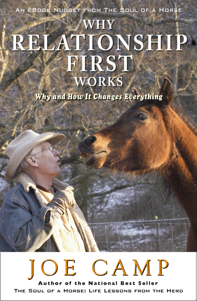 Why Relationship First Works - Why and How It Changes Everything   Personally Inscribed