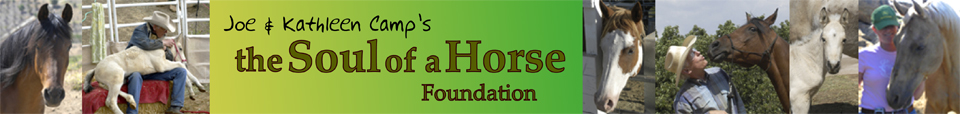 A-FoundationLogo1