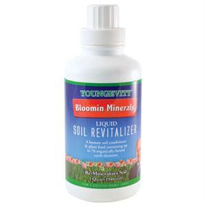 Bloomin-Llquid-plant-revitalizer-1-qt_300