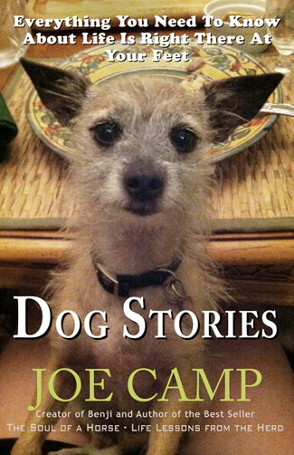 Dog Stories! - Everything You Need to Know About Life Is Right There at Your Feet - Personally Inscribed